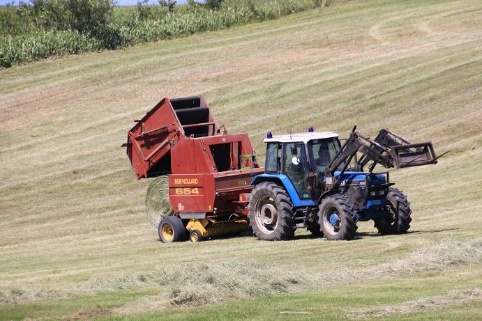 牧草ロールのある風景 7月14日_f0113639_16152241.jpg