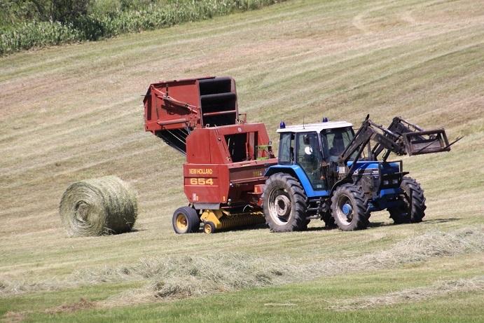 牧草ロールのある風景 7月14日_f0113639_16153355.jpg