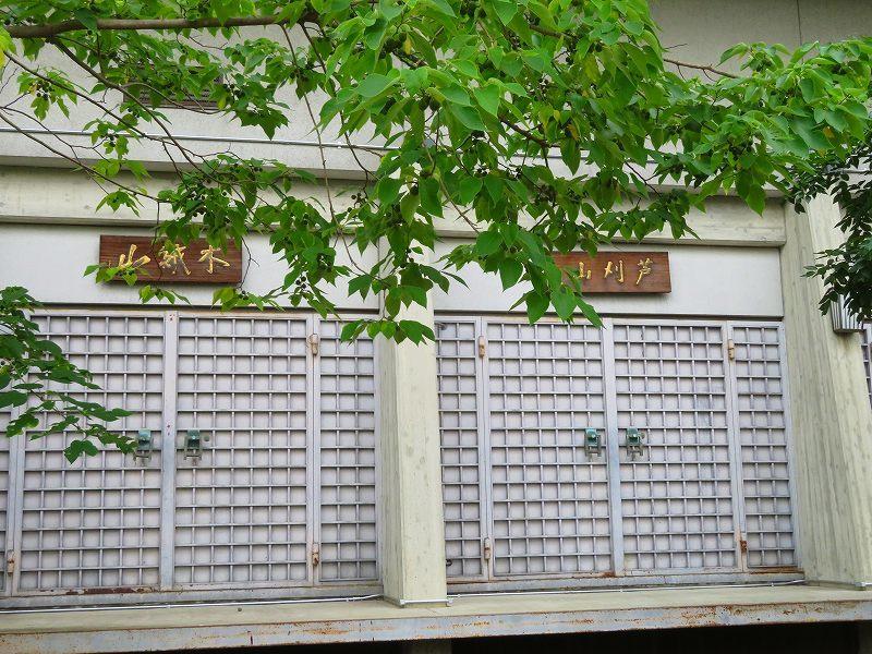 鴨川から円山公園へ20190712_e0237645_22362069.jpg