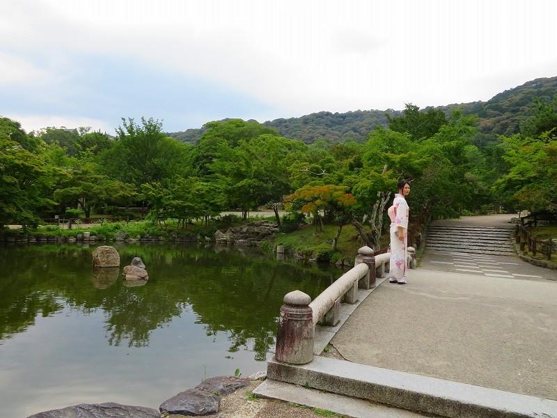 鴨川から円山公園へ20190712_e0237645_22362116.jpg