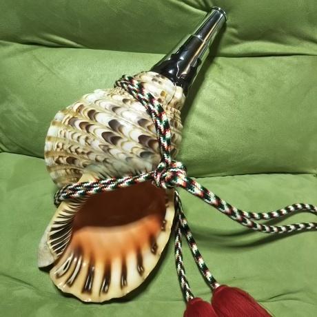 法螺貝がやって来るの巻・其の壱_b0097747_11363367.jpg