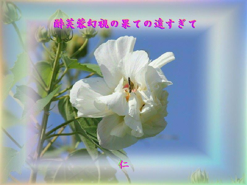 e0017651_22393166.jpg