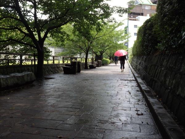 熊本城の復興はまだまだ_f0337554_14010257.jpg