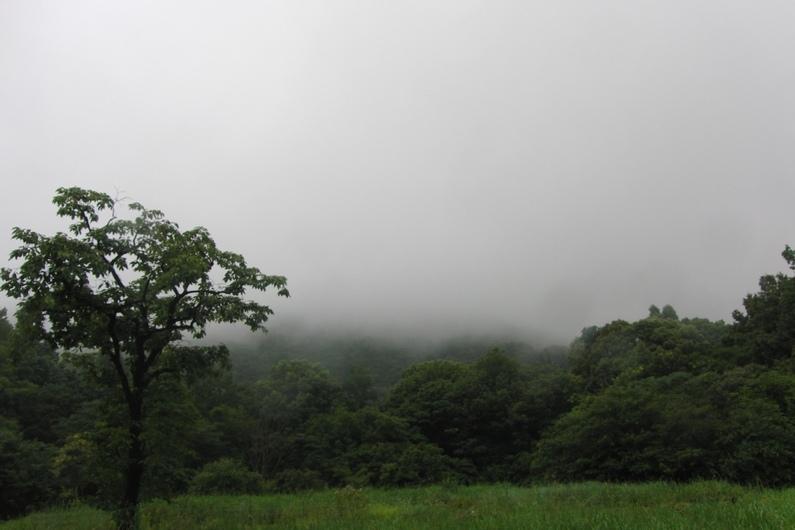 雨の日は傘をさして_c0065260_17015956.jpg