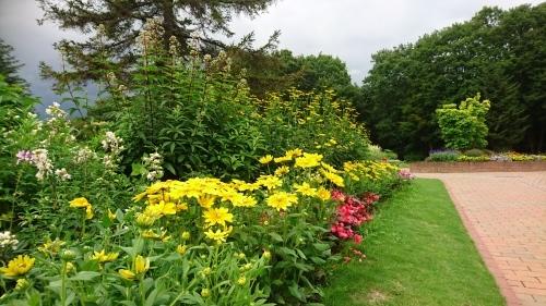 夏の花壇_f0228967_22304340.jpg