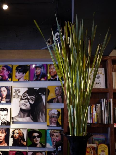 今週のWORLD BOOK CAFEさんは「シマガマの穂」。2019/07/14。_b0171193_18202967.jpg