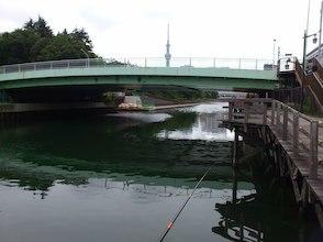 【2019釣行⑪】ハゼ釣り・ひなた中継竿おろし_d0106518_19161246.jpg