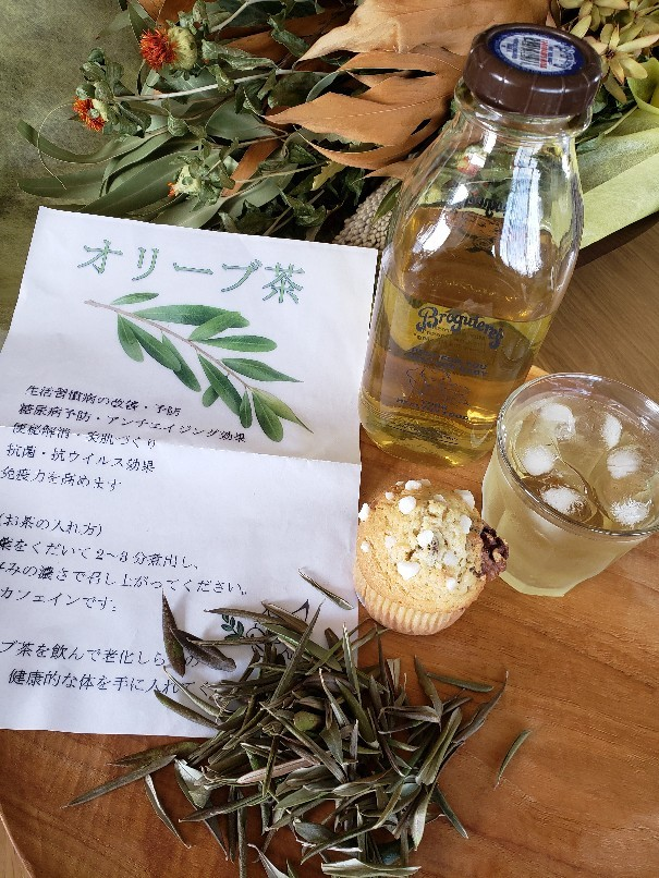江田島のオリーブ茶_a0105740_10564769.jpg