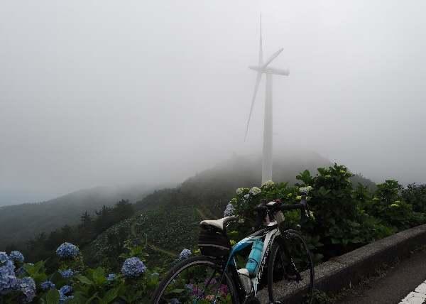 今年も行って来ました、大川原高原。あじさい見ごろ_b0149340_20265978.jpg