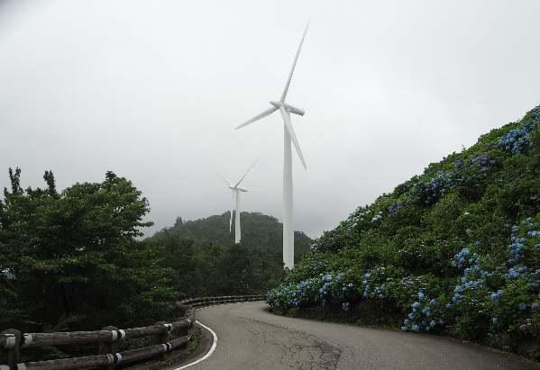 今年も行って来ました、大川原高原。あじさい見ごろ_b0149340_20494723.jpg