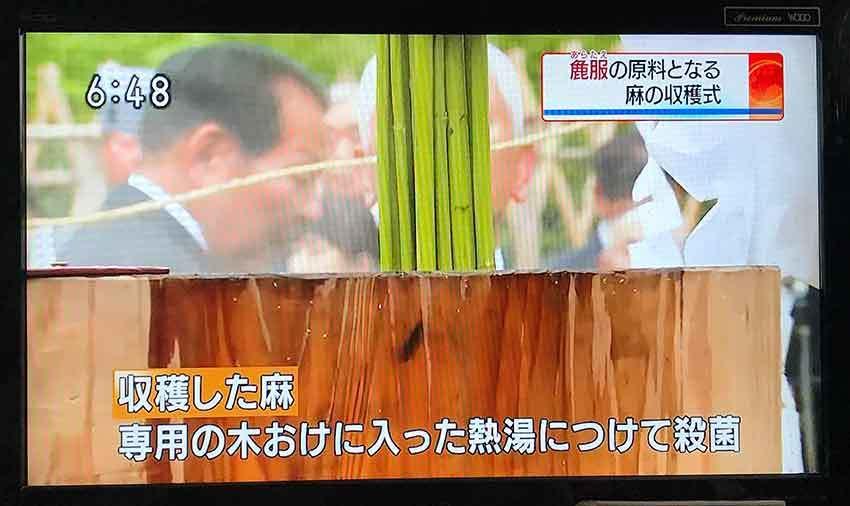 7月15日木屋平「三木家」の「抜麻式」と「初蒸式」-01♪_d0058941_20550713.jpg