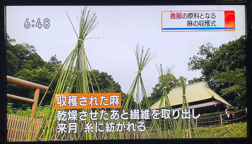 7月15日木屋平「三木家」の「抜麻式」と「初蒸式」-01♪_d0058941_20571074.jpg