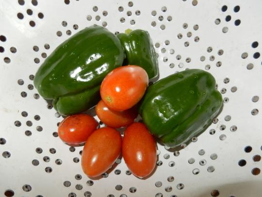 '19,7,15(月)雨ばかりで野菜が高騰しているらしい!_f0060461_10064151.jpg