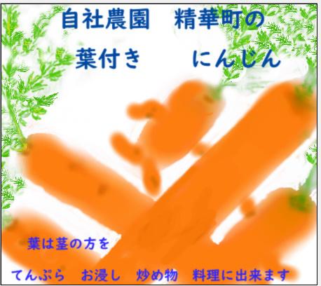 c0269262_11361160.jpg