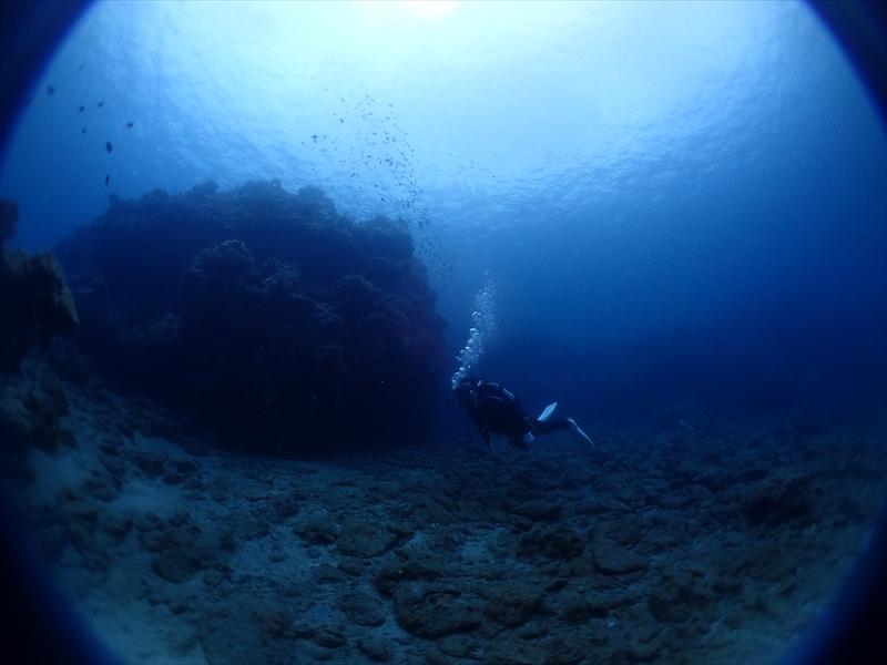 海の中は静かやけど船上は3才児2名でカーニバル状態_d0053180_1513188.jpg