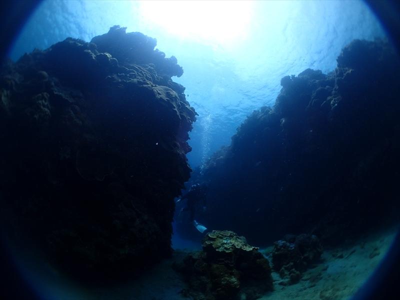 海の中は静かやけど船上は3才児2名でカーニバル状態_d0053180_15132288.jpg