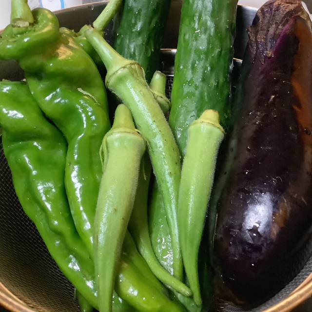 夏野菜の天ぷらを立ち喰い、食とセックスは同類である。_a0334793_20510968.jpg