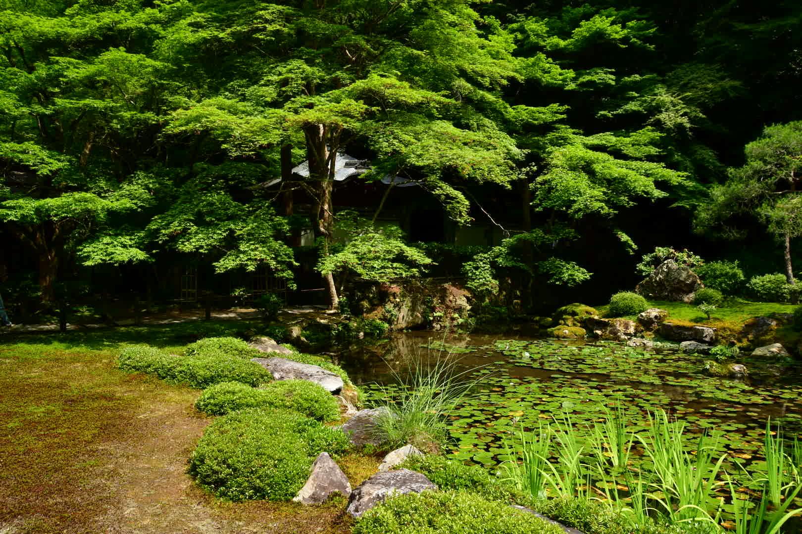 京都旅 2019 その7_b0223512_20240352.jpeg