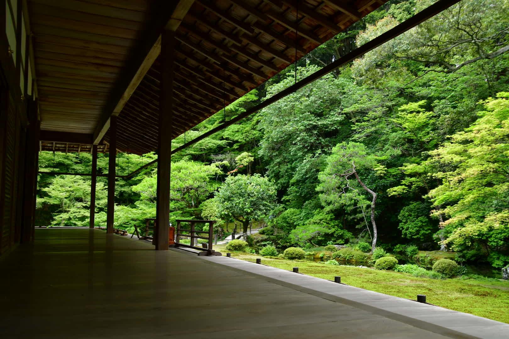 京都旅 2019 その7_b0223512_21235103.jpeg