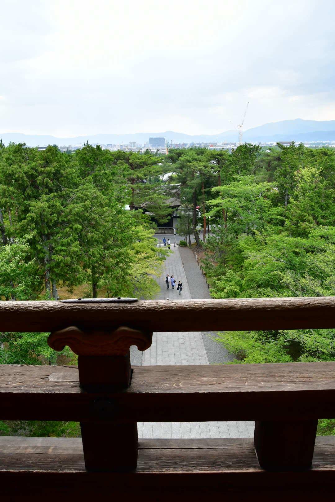 京都旅 2019 その8 ラスト_b0223512_21270972.jpeg