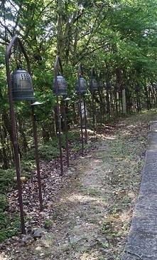 京都帝釈天(中平)_f0354314_14455500.jpg