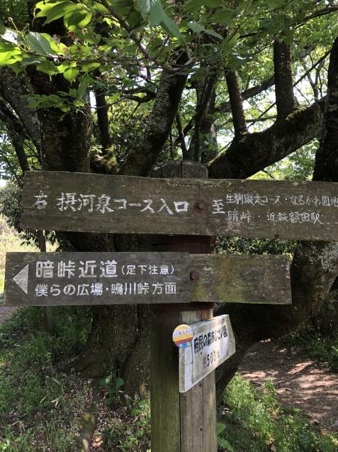(18)瀬織津姫からのミッション②3S政策を解除せよ!_b0409627_23380365.jpg