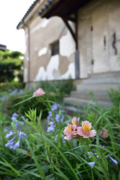 (旧)枚方宿の町家再生工事―3_e0164563_14364686.jpg