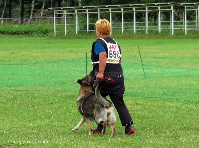 7月15日、JKC北海道ブロック訓練競技会_f0067179_16030499.jpg