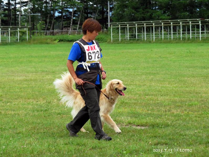 7月15日、JKC北海道ブロック訓練競技会_f0067179_16032654.jpg
