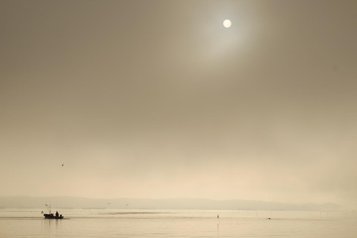 海霧色の朝_e0051186_10413431.jpg