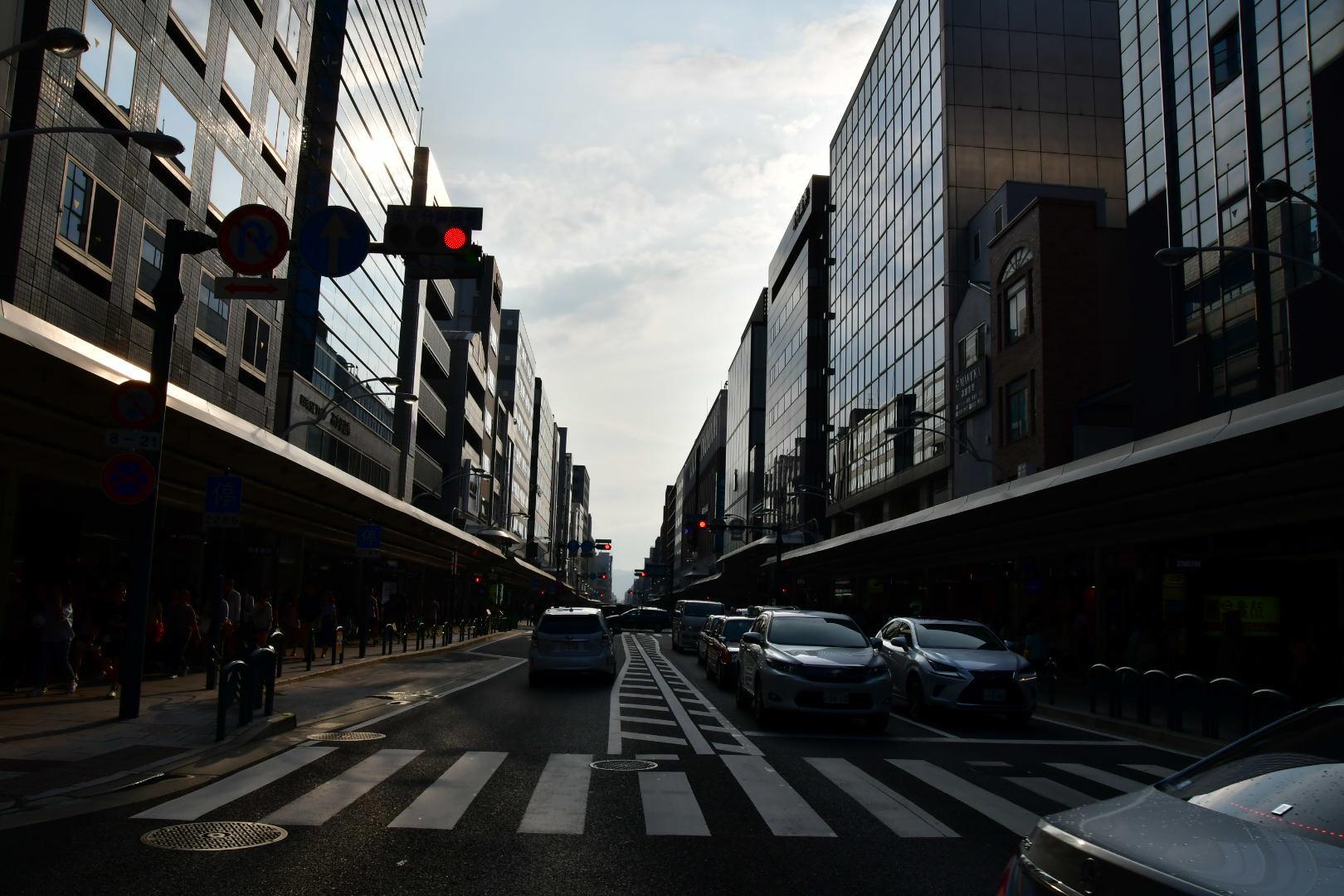 京都旅 2019 その8 ラスト_b0223512_20250003.jpeg