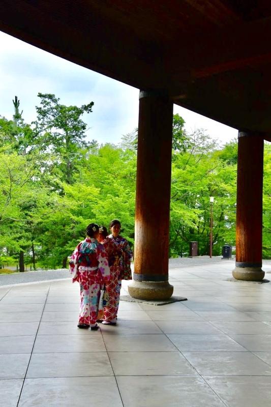 京都旅 2019 その8 ラスト_b0223512_20281675.jpeg