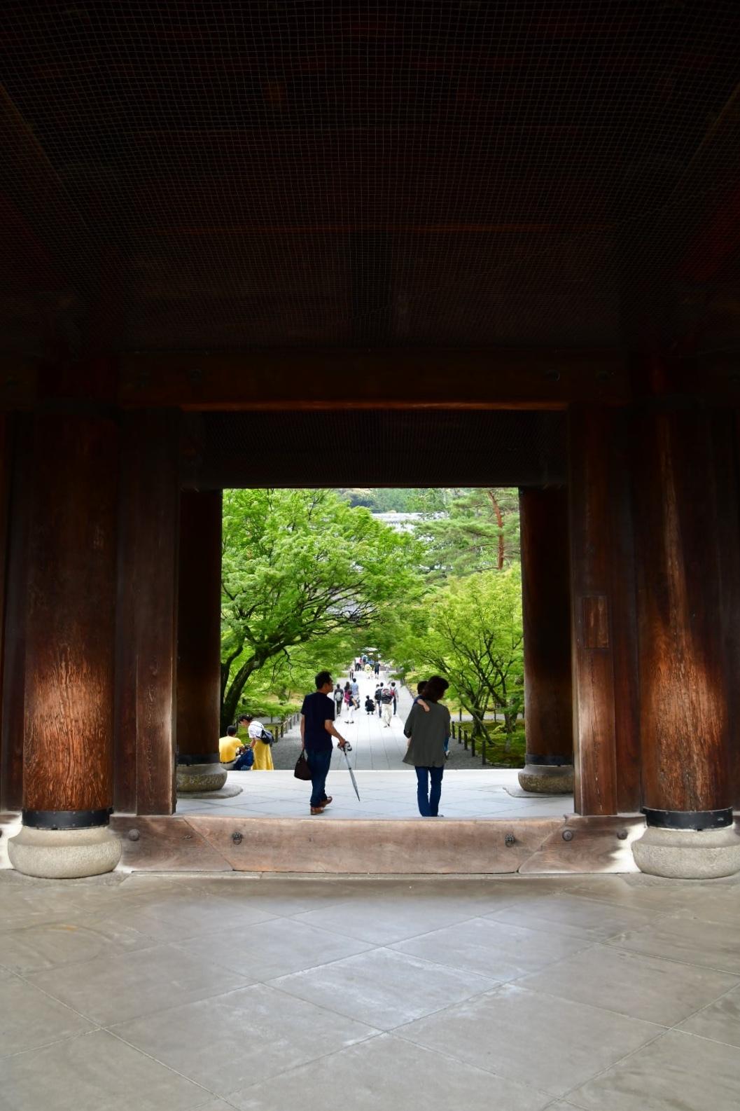 京都旅 2019 その8 ラスト_b0223512_20291854.jpeg