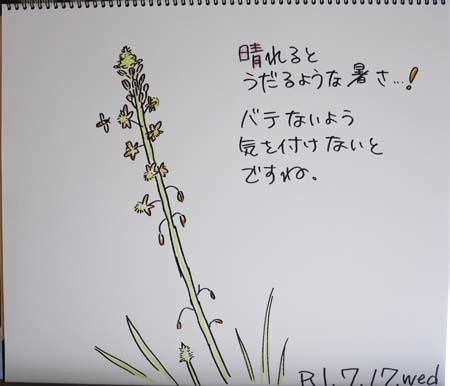 b0364195_09134119.jpg