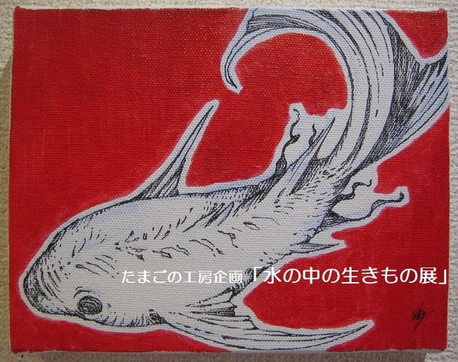 たまごの工房企画「水の中の生きもの展」 その3_e0134502_15083885.jpg