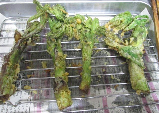 2019年5月29日(水)  貫気別山麓で山菜採り_a0345007_16304460.jpg
