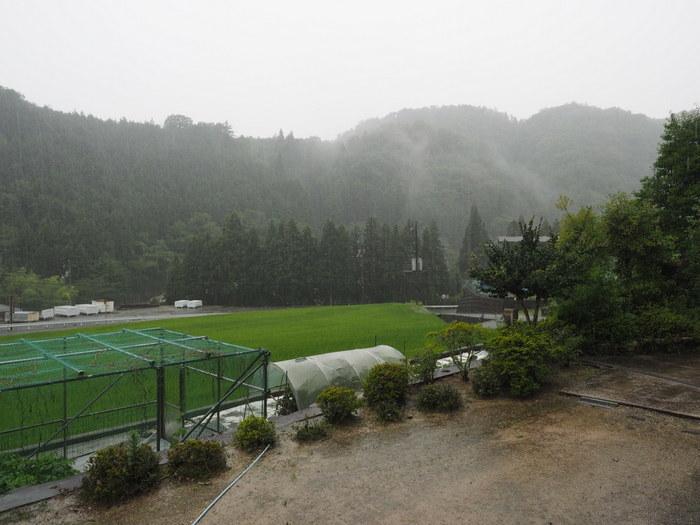 雨の一日_c0116915_23434196.jpg