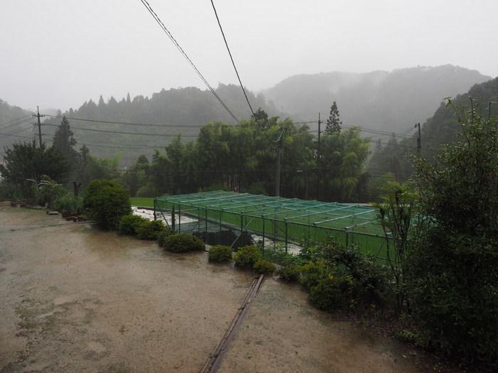 雨の一日_c0116915_23435023.jpg