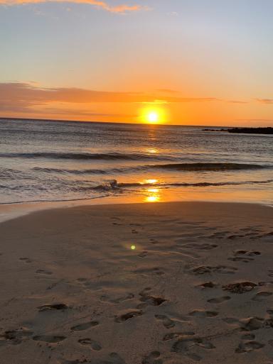ハワイ島に到着_c0223630_16235353.jpg