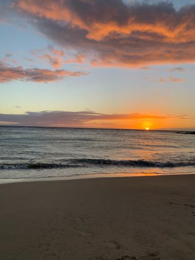 ハワイ島に到着_c0223630_16245589.jpg