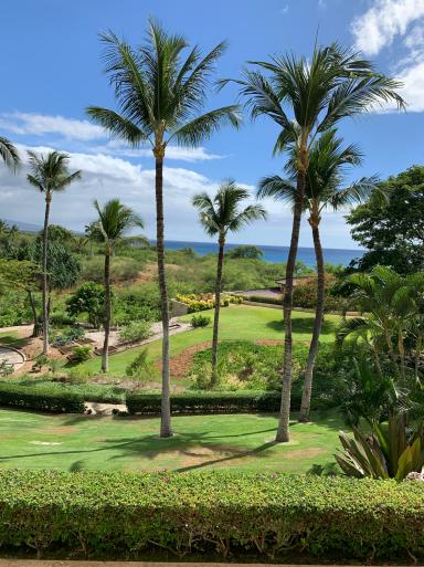 ハワイ島に到着_c0223630_16262668.jpg