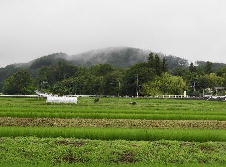 雨模様の八ヶ岳_e0172950_2153313.jpg