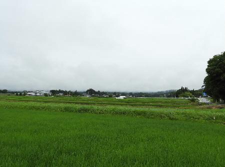 雨模様の八ヶ岳_e0172950_215452.jpg