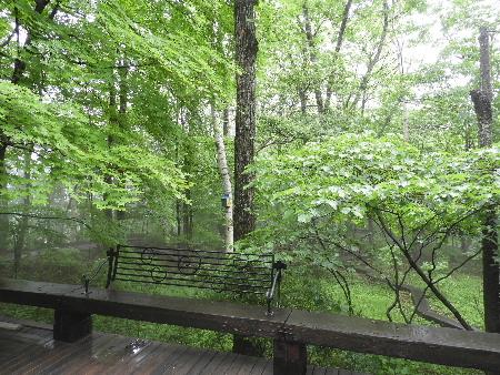 雨模様の八ヶ岳_e0172950_2161731.jpg