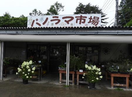 雨模様の八ヶ岳_e0172950_216795.jpg