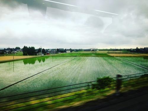 花咲ツアー2019 〜京都、金沢編〜_e0071652_09520624.jpg
