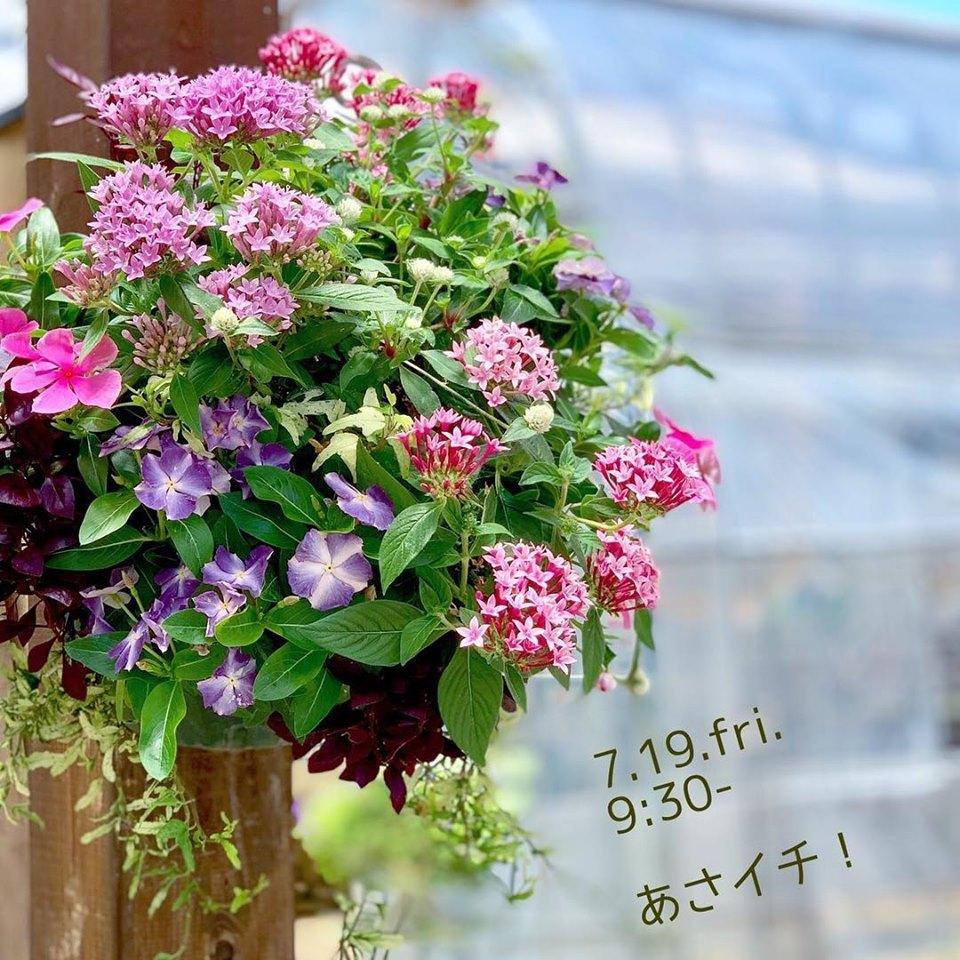 今月2回目のあさイチ!!_f0220152_17153304.jpg