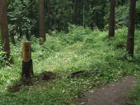 ヤマツツジの苗木の植樹に向け穴掘り7・17六国見山臨時_c0014967_09595248.jpg