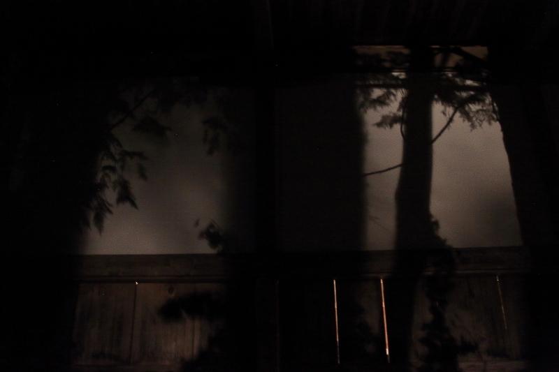 遠野早池峯神社宵宮(2019年7月17日)_f0075075_09372971.jpg