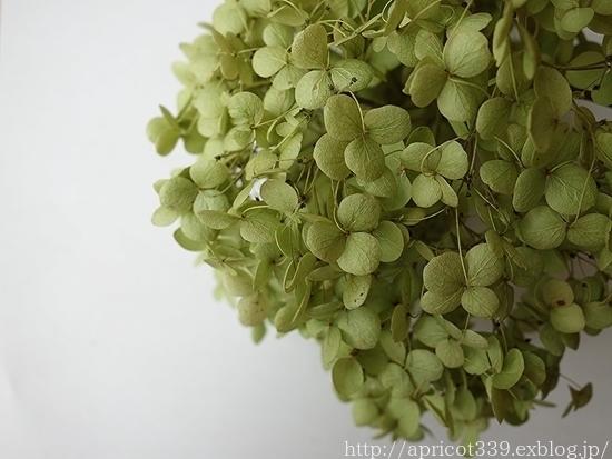 アジサイ・アナベルとのドライフラワー作りと、白花のエリンジュームのその後_c0293787_10161444.jpg